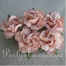 Троянда 4,5см пудрова