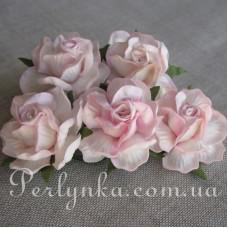 Троянда 4,5см біло рожева