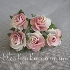 Троянда 2,5см кремово рожева