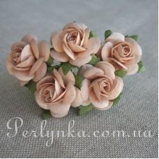 Троянда 2,5см  капучіно