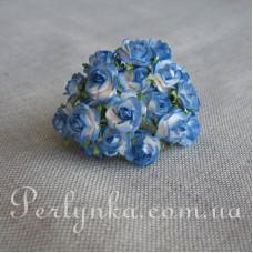 Троянда 1см біло синя