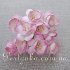 Цвіт вишні 2,5см кремово-рожевий