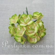 Цвіт вишні 2,5см кремово-салатовий