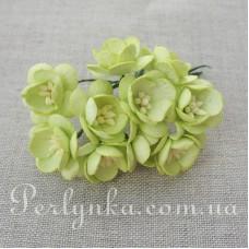 Цвіт вишні 2,5см світло салатовий